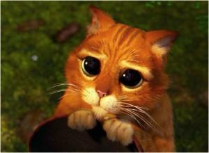 Кот в сапогах из мультфильма про Шрека