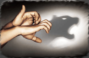 Фото: Тень хищника на стене